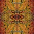 TORRENTIAL DOWNPOUR The Phaneron album cover