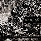 ULVEGR Vargkult album cover
