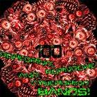 VARIOUS ARTISTS (GENERAL) 100 Goregrind Porngore Cybergrind Bands Compilation Vol. 2 album cover
