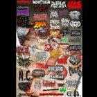 VARIOUS ARTISTS (GENERAL) Insufferable Noise album cover