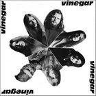 VINEGAR Vinegar album cover