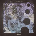 WAKE — Devouring Ruin album cover