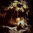 WOLVES IN THE THRONE ROOM Celestial Lineage album cover