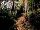 WRAITH (BC) Unending Lands album cover