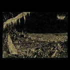 YELLOW EYES Hammer of Night album cover