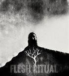 YHDARL Demo Session - IX - Flesh Ritual album cover