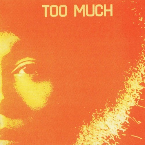 TOO MUCH - Too Much cover