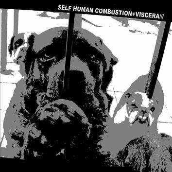 VISCERA/// - Self Human Combustion vs. Viscera/// cover