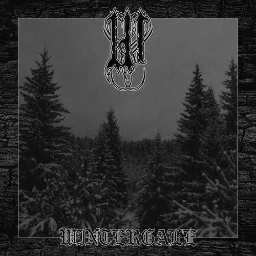 W - Wintergale cover