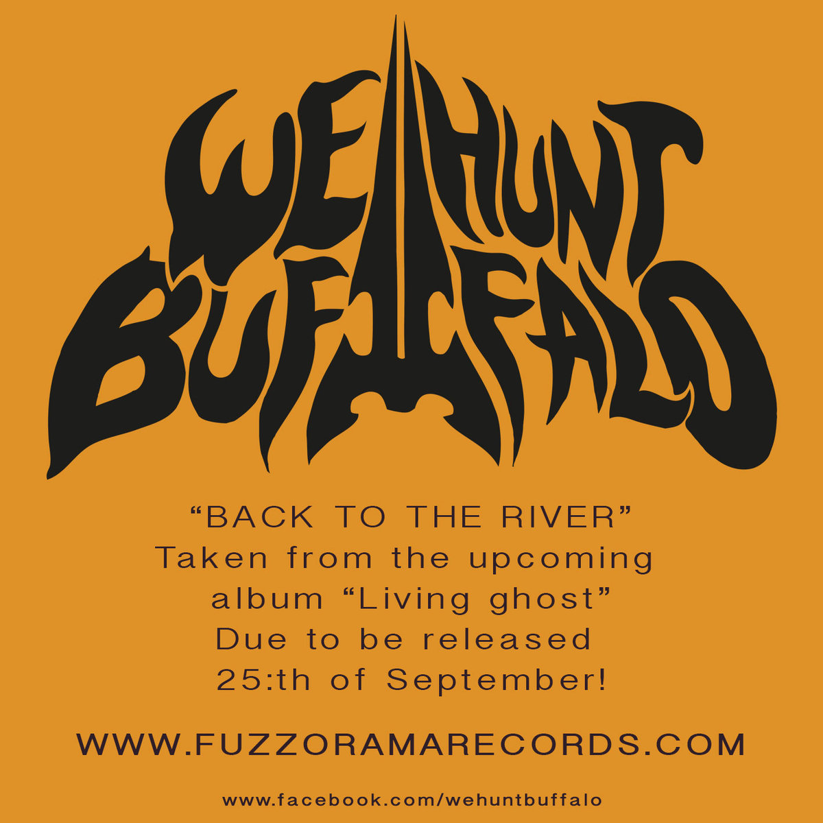 WE HUNT BUFFALO - Back To The River cover