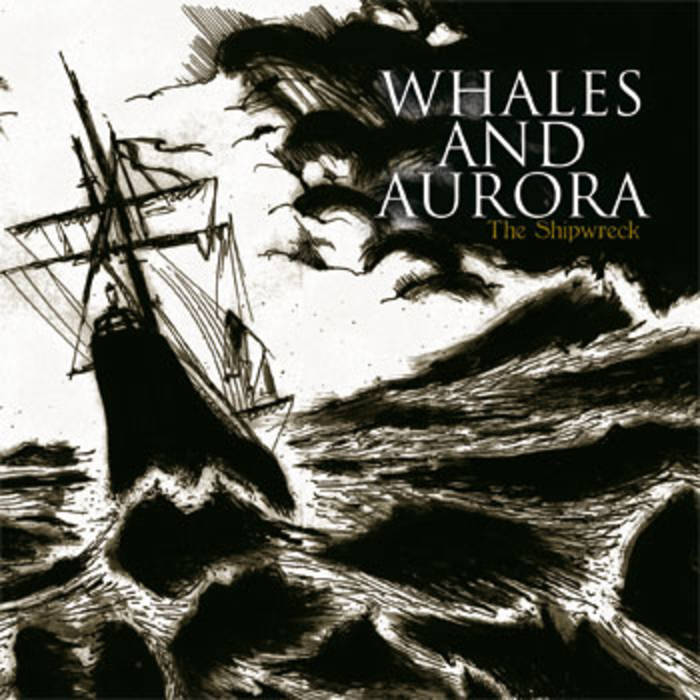 WHALES AND AURORA - The Shipwreck cover