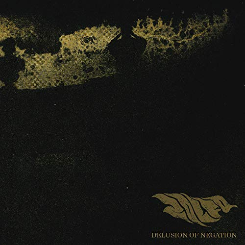 ZOLFO - Delusion Of Negation cover